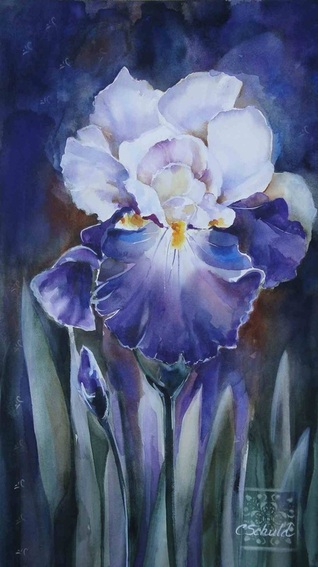 """Iris"" by Charlotte Schuld 17 x 28 Watercolor $615"